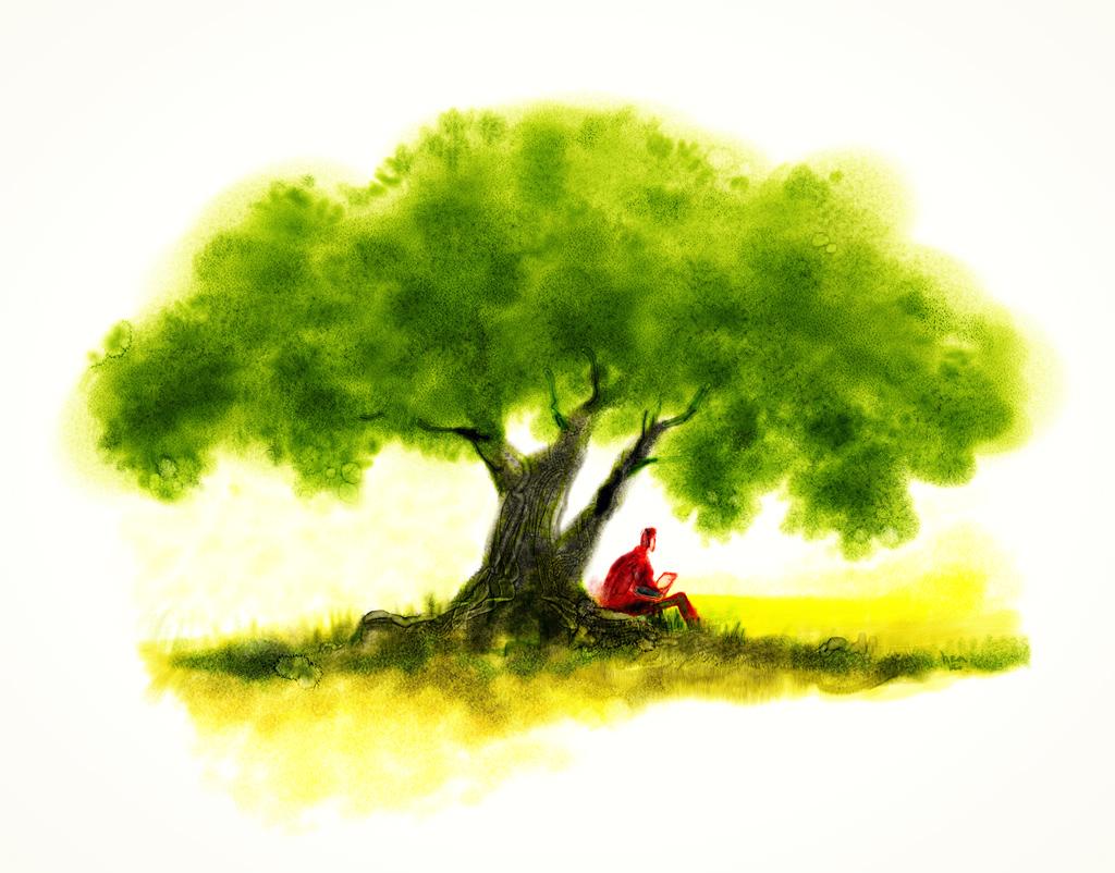 http://www.baciadasalmas.com/images/2008/arvore-aquarela-b.jpg